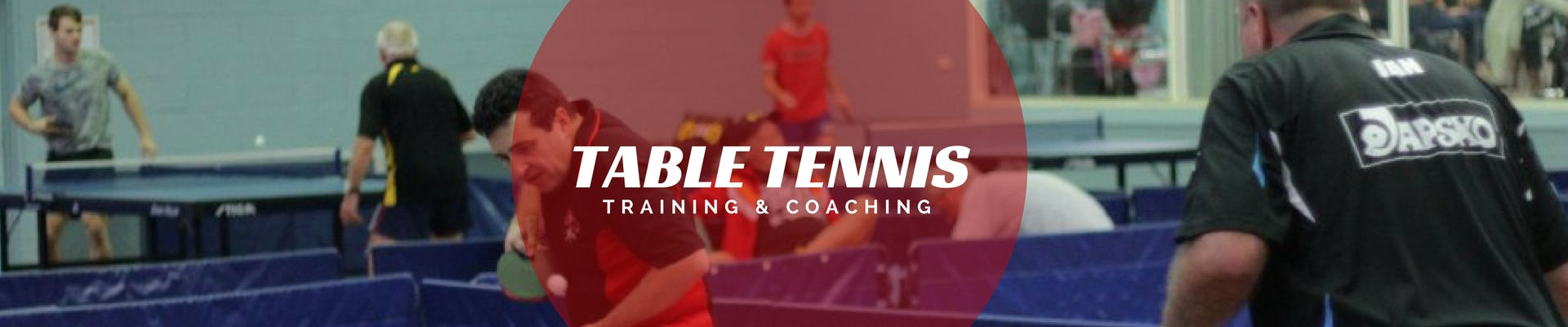 table tennis training and coaching