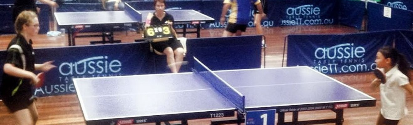 casual play table tennis